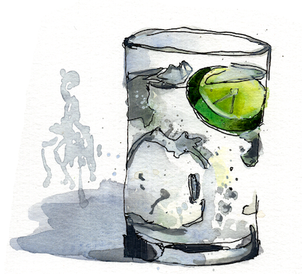 gin001crop.png